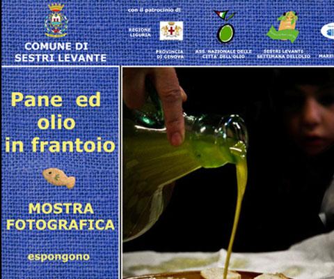 PANE ED OLIO IN FRANTOIO