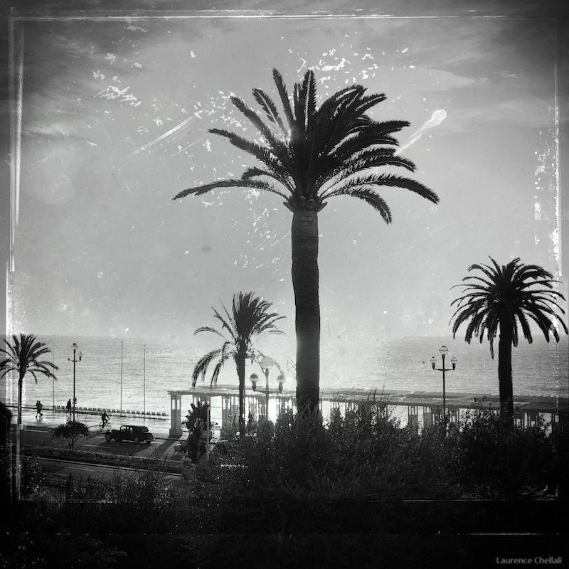 PROMENADE DES ANGLAIS – NOVEMBRE 2011