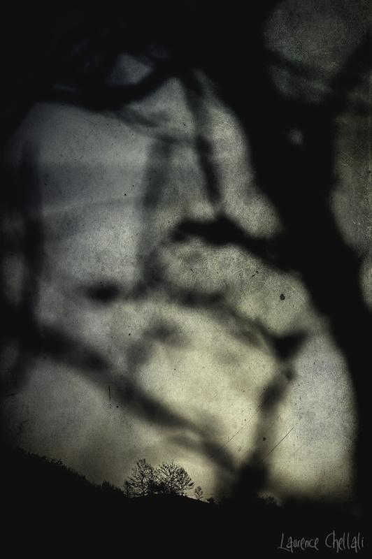 «CRÉPUSCULE» A ÉTÉ SÉLECTIONNÉE POUR «AT THE EDGE OF THE NIGHT»